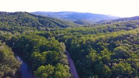 Flying over the forest at sunset stock video footage
