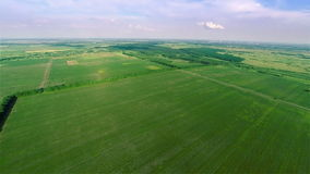 Flying over green fields Royalty Free Stock Image