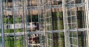 Flying over a large greenhouse with flowers, a greenhouse with a retractable roof, a greenhouse view from above, growing stock video