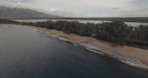 Maui Coastline. Flying over the Maui Coastline. 4K UHD establishing shot stock footage