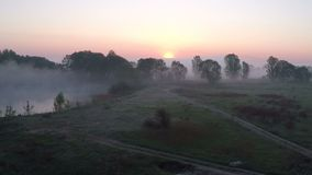Flying over the misty meadow at dawn stock footage