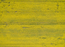 Flying over the rapeseed field with drone. Landsacape. Stock Photos