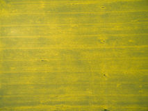 Flying over the rapeseed field with drone. Landsacape. Royalty Free Stock Photos