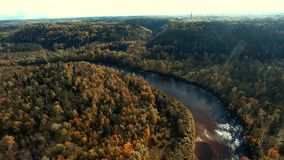 Flying over river and golden autumn forest. Sigulda, Latvia. stock video