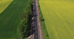 Flying Over the Road in a Field of Canola stock video