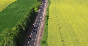 Flying Over the Road Trafic in a Field. Aerial view Car Driving on Country Road about Field Canola stock video footage