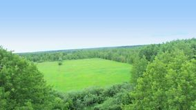 Flying over tree tops, neighborhood forest aerial view pilot pov. Stock footage stock footage