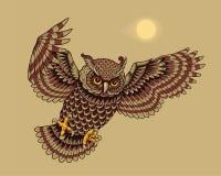 Flying owl bird. Flying and hunting owl bird. Vector illustration Stock Photography