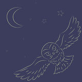 Flying Owl. Hand draw. Flying Owl in dark. Hand draw Stock Image