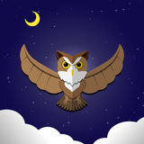 Flying Owl on night background,front view, vector. Design vector illustration