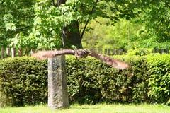 Flying owl Stock Photography