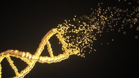 Flying particles make golden DNA molecule model. Loopable conceptual 3D animation