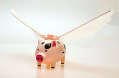 Flying pig Stock Photo
