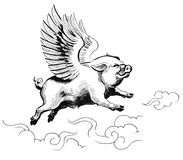 Flying pig. Ink black and white illustration of a flying pig Royalty Free Stock Photos