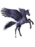 Flying pony Royalty Free Stock Photo