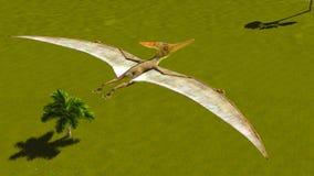Flying Pterodactyl Stock Photo