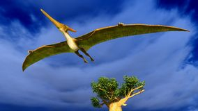 Flying pterodactyl Royalty Free Stock Photography