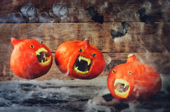 Flying pumpkins royalty free stock photos