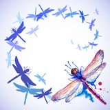Flying Purple Watercolor Dragonflies Royalty Free Stock Photography