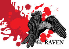 Flying raven. And red blots and splashes Royalty Free Stock Image