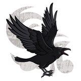 Flying Raven. Vector illustration of a flying black raven Stock Photo