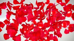 Flying Red Rose Petals. An exciting 3d rendering of flying petals of red roses in the white background. They mean deep romantic feelings, our honeys and Saint Royalty Free Stock Photos