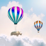 Flying rhino Royalty Free Stock Photos