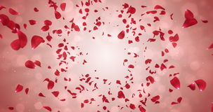Flying Romantic Red Rose Flower Petals Falling Background Loop 4k stock footage