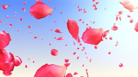 Flying rose petals in the sky with sun. HD 1080. Looped animation.  stock video