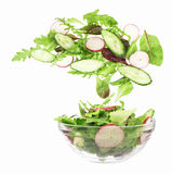 Flying salad Stock Images