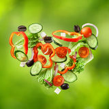 Flying salad on natural green background Royalty Free Stock Image