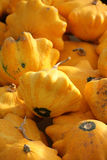 Flying saucer squash. In a pile Stock Photo