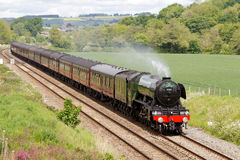 Flying Scotsman Royalty Free Stock Images
