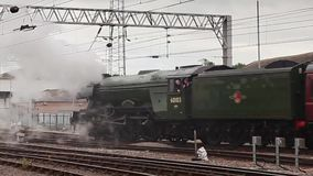 Flying Scotsman stock video footage