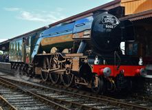 Flying Scotsman. When on West Somerset Railway royalty free stock images
