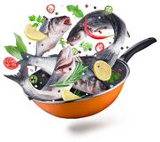 Flying seabass fishes with spices falling into a frying pan. Cl royalty free stock image