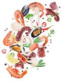 Flying seafood pieces and spices on white background. File conta stock photos
