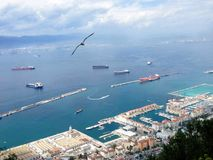 The port of Gibraltar stock photography