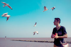 Flying seagulls and smile man Royalty Free Stock Image