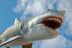 Flying Shark royalty free stock image