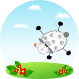 Flying sheep Royalty Free Stock Photography