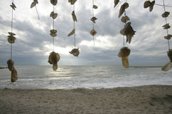 Flying shells. Long and short threads with white shells Royalty Free Stock Photography