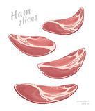 Flying slices of ham isolated on white background. Meat delicatessen product. Vector gastronomic illustration. In cartoon style vector illustration