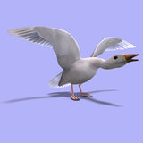 Flying snow goose. 3D rendering of a flying snow goose with clipping path and shadow over white Stock Photo