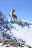 Flying snowboarder on mountains Royalty Free Stock Photography
