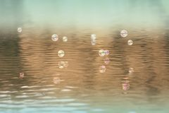 Flying soap bubbles Stock Photography