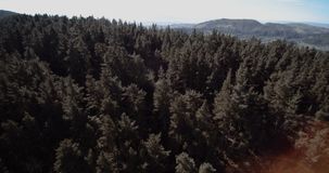 Flying over a forest in Spain