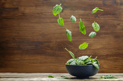 Flying spinach Royalty Free Stock Photos