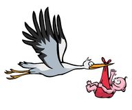 Flying stork with baby. Flying stork with a baby in a red cloth on white background Stock Images