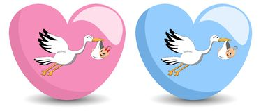 Flying Stork Delivering Baby. Illustration featuring a flying stork delivering a girl on pink heart and a boy on blue heart. Eps file is available Stock Photography